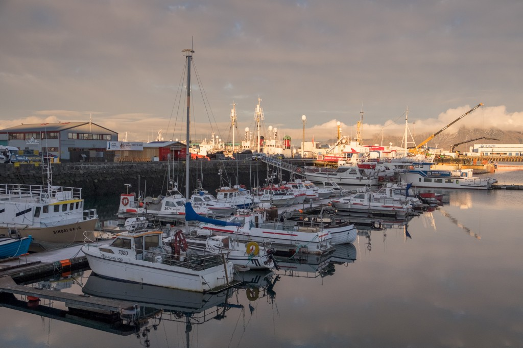 Boats at the Old Harbour, Reykjavik.